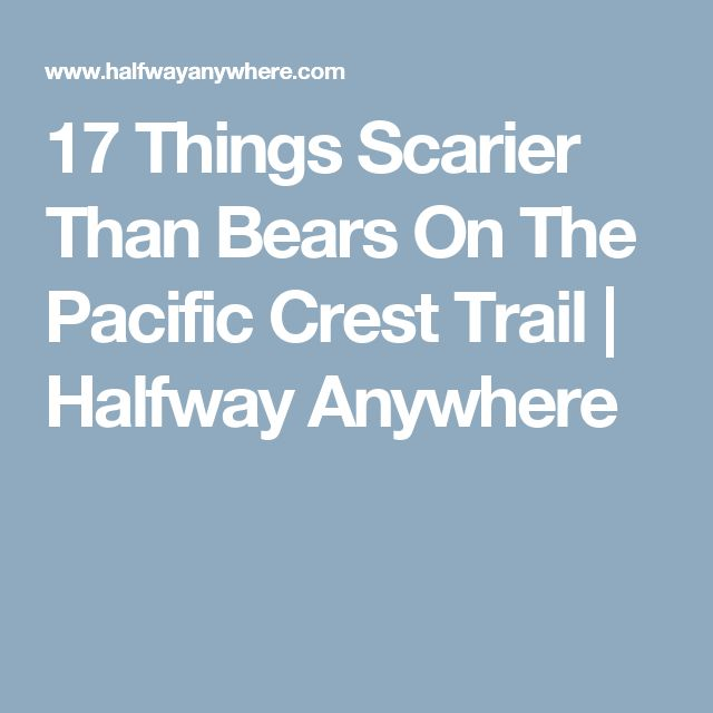 17 Things Scarier Than Bears On The Pacific Crest Trail | Halfway Anywhere