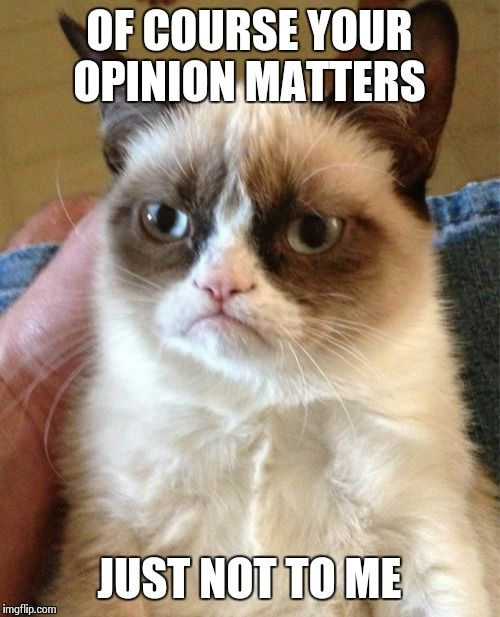 Grumpy Cat | OF COURSE YOUR OPINION MATTERS JUST NOT TO ME | image tagged in memes,grumpy cat | made w/ Imgflip meme maker