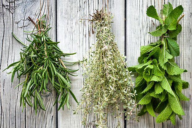 10 Herbs that Flavor Food and Improve Health   MyFoodDiary.com