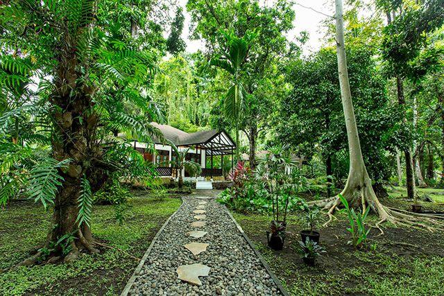 Murex Manado Resort - Indonesia Dive Resort