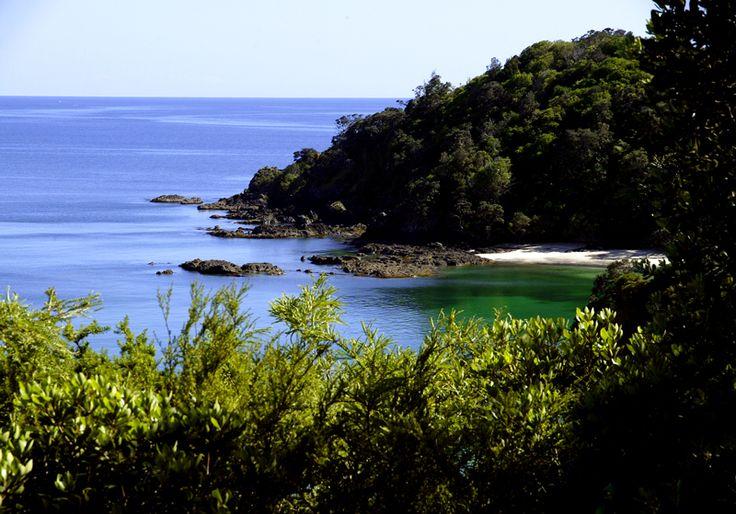 Whale Bay, Tutukaka Coast, Northland, New Zealand