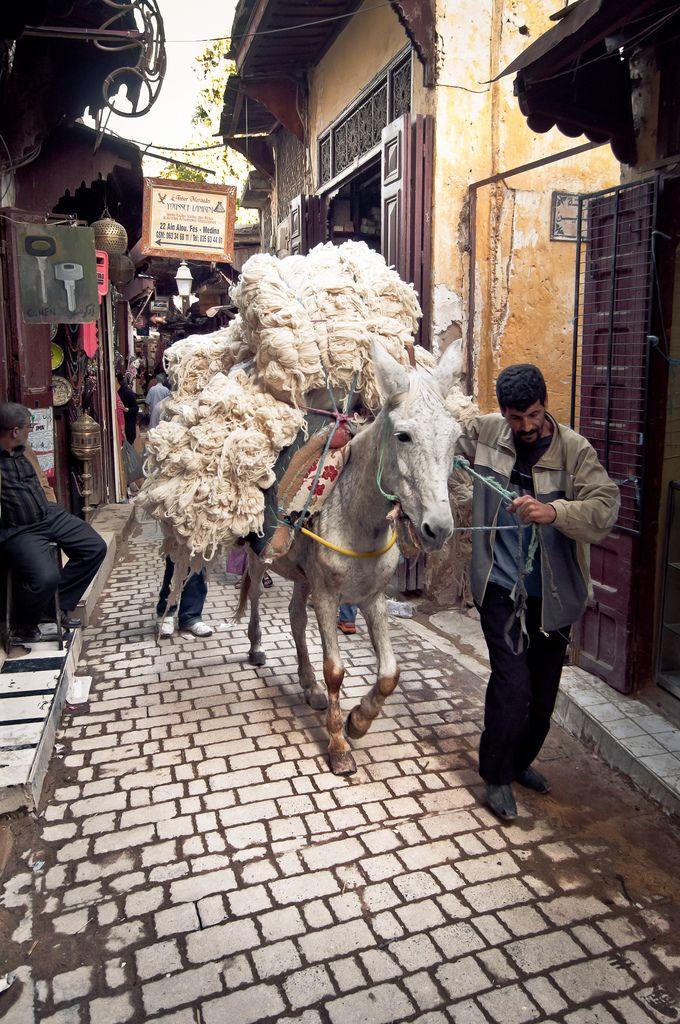 Carpet wool . Morocco