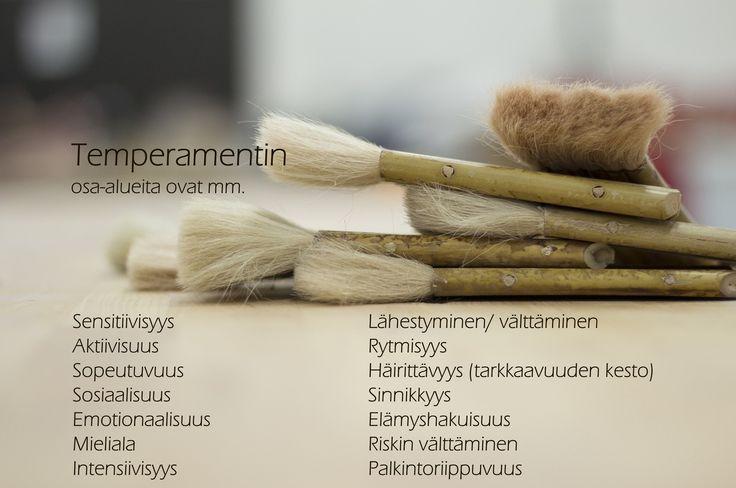 Temperamentin osa-alueita