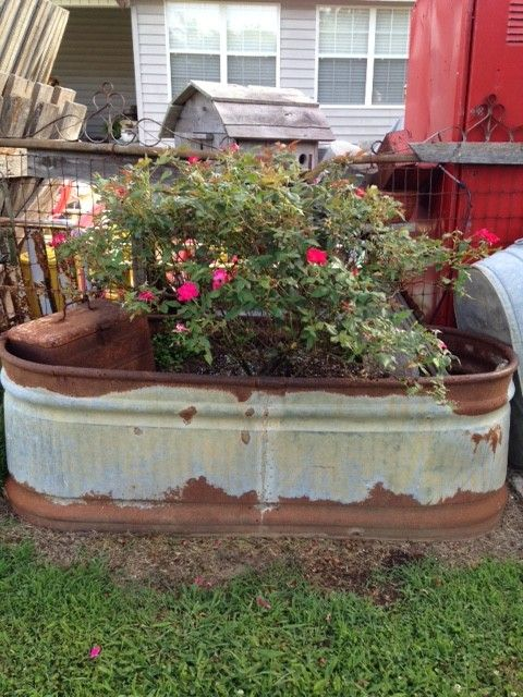 Old Metal Gates And Galvanized Watering Tub Www.Gardenchick.com