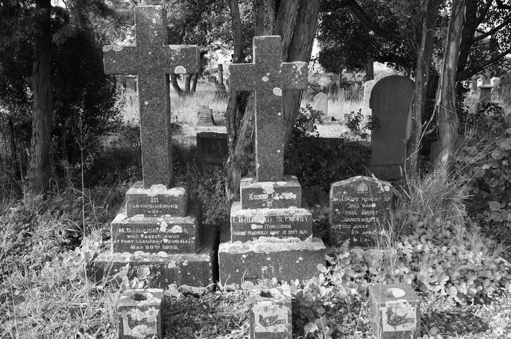 Graves in Grahamstown's Old Cemetary, final home to the 1820 Settlers