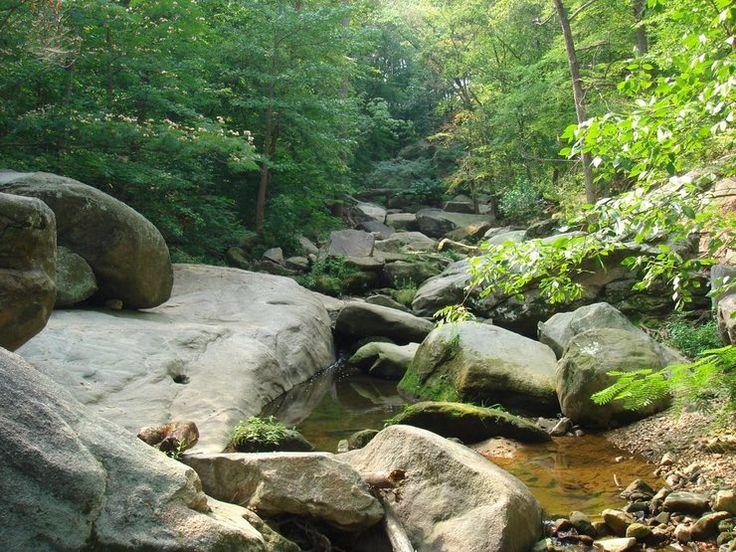 Rock Climbing Forest Hill Park in Richmond