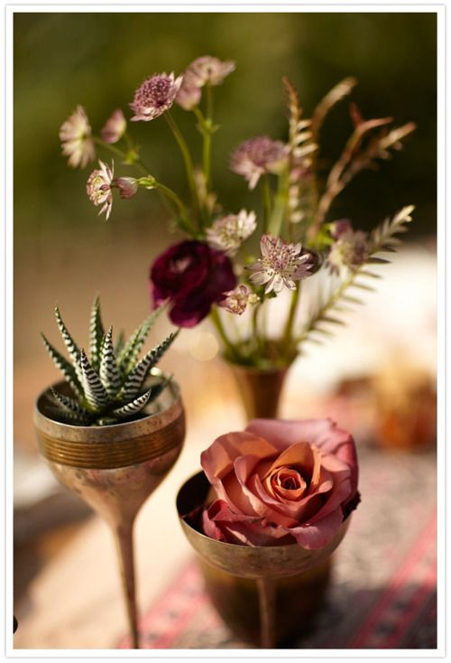 Bohemian summer garden party. Thorns and roses and succulents. The way it should be.