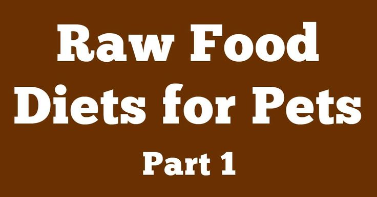 Having a species-appropriate diet means animals must consume the foods they are designed to eat. http://healthypets.mercola.com/sites/healthypets/archive/2013/04/01/raw-food-diet-part-1.aspx