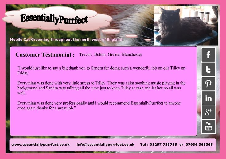 Customer Testimonial of EssentiallyPurrfect #mobile #Ragdoll cross #catgrooming service.  Trevor #Bolton #Manchester