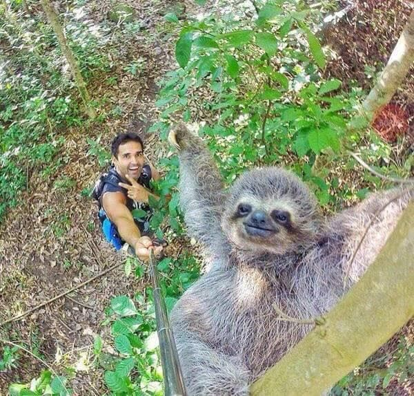 Sometimes, using a selfie-stick is ok