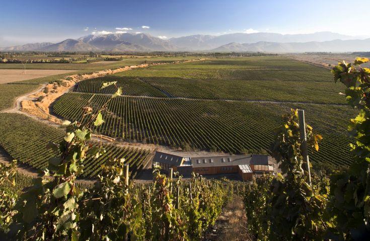 Casa de Cata Viña Maipo winery in Chile by Claro + Westendarp