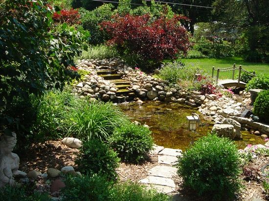 80683 best images about love everything about gardens on for Pond shade ideas