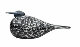 Annual Bird 2012 Mirella