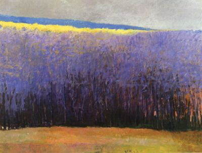 Wolf Kahn. Yellow. Pintrest is sort of killing lavender for me, though. How many pictures of lavender fields can a person look at?