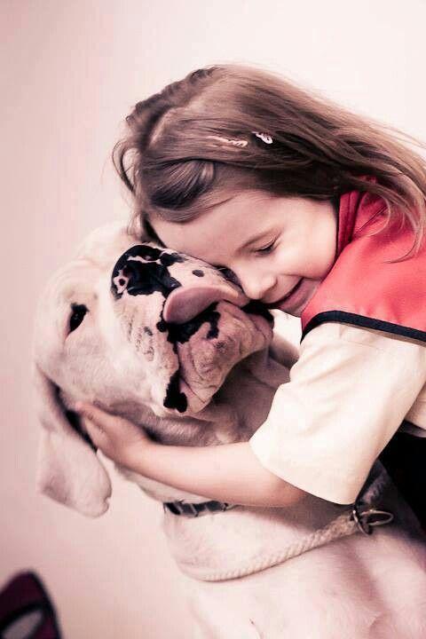 #Dogo #Argentino - wonderful photos