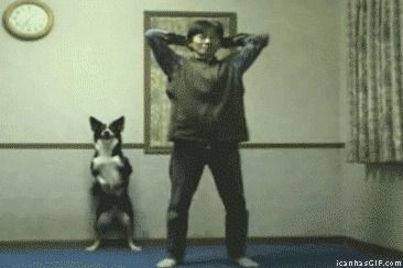 Can Your Dog Do This.....................?