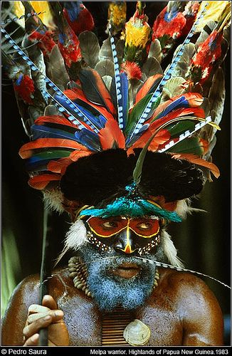 This could be created as a head dress and mask combination.      Papua New Guinea. | Melpa Warrior.  Baiyer River. Western Highlands © Pedro Saura