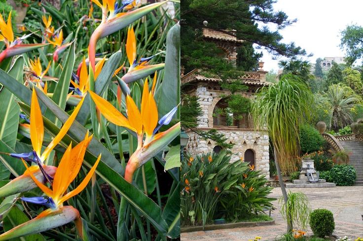 Lady Trevelyan's Garden, Taormina