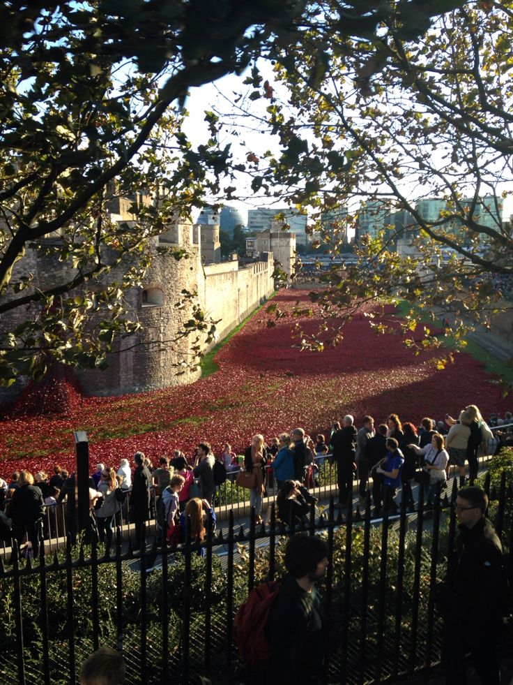 The Tower of London - Got to see the millions of poppies being placed along the perimeter of the tower; stunning!