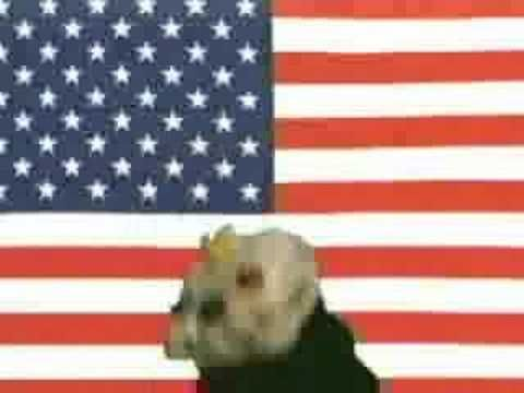 United States of Whatever with Sifl AND Olly