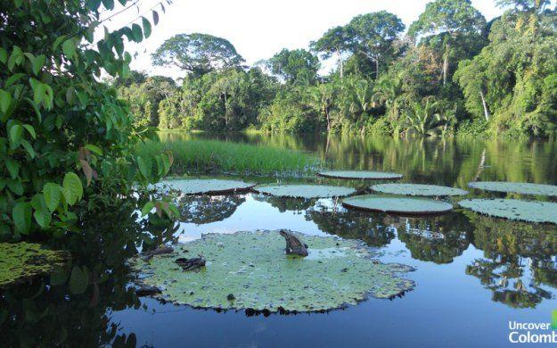 Amacayacu National Natural Park
