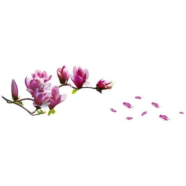 Wangyue Purple Magnolia Flower Wall Stickers Wall Decor (215 DOP) ❤ liked on Polyvore featuring home, home decor, wall art, magnolia home decor, purple wall decals, purple home decor, purple wall art and purple home accessories