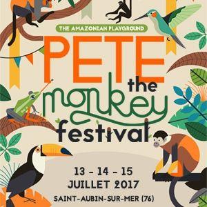 """Résultat de recherche d'images pour """"pete the monkey festival"""""""