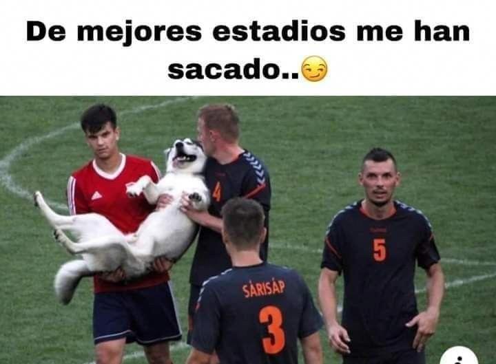 Futbol Mx In 2020 Funny Memes Memes Funny Times