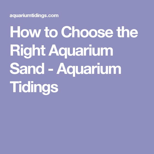 How to Choose the Right Aquarium Sand - Aquarium Tidings