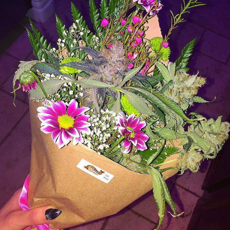 My kind of flowers