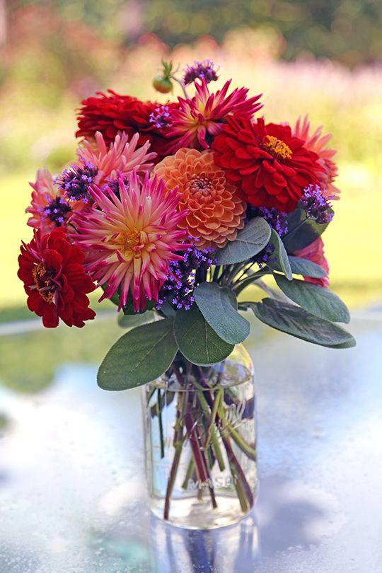 Fall Gerbera Daisy Bouquet Best 25+ Chrysanthemum...