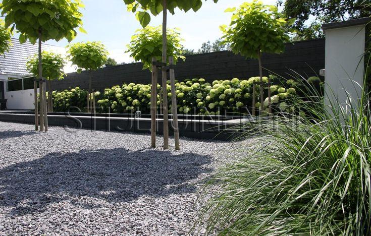 Grind witte bolhortensia en siergrassen love it tuin for Tuinarchitect modern