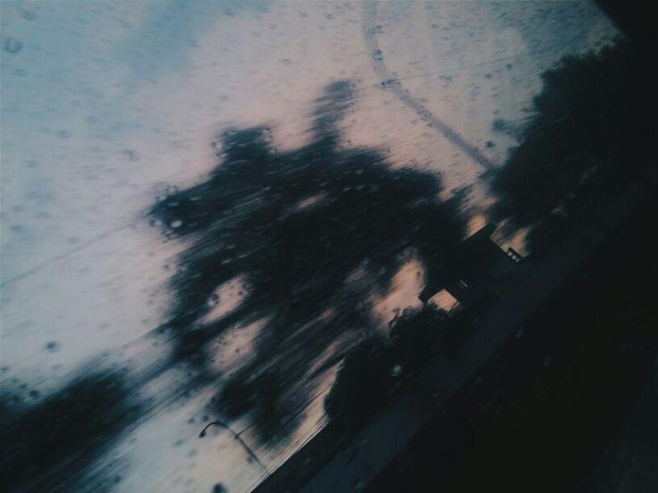 #tumblr #rain #photography #trees #sunset #afternoon #blue #vintage #pastel