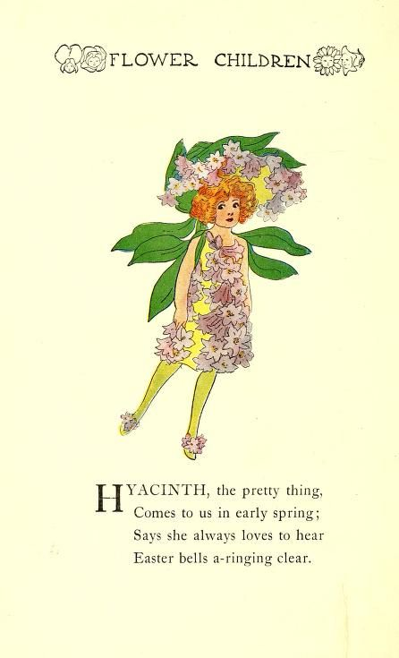 """Hyacinth ~ From """"Flower Children; the little cousins of the field and garden"""", 1910"""