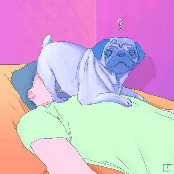 Pug Face Sit by SuperPhazed (print image)