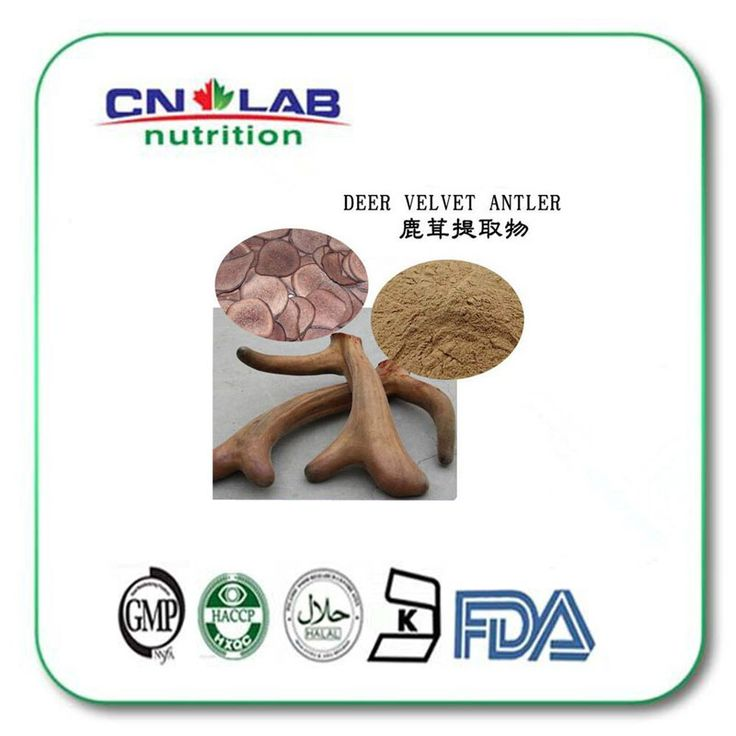 Find More Slimming Creams Information about Good Quality deer velvet antler extract/deer antler velvet powder/deer antler velvet extract powder 500g hot  sale,High Quality antlers sale,China antler handle bowie knife Suppliers, Cheap antler gifts from Cnlab Pharma Ltd on Aliexpress.com