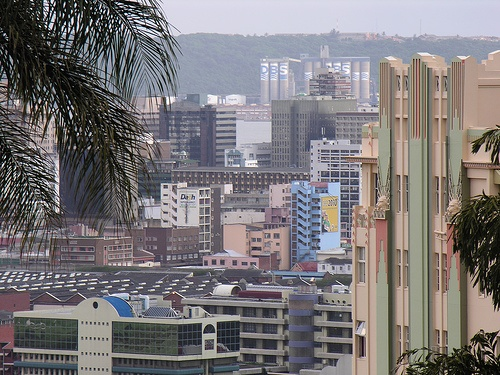 Durban From Musgrave Road