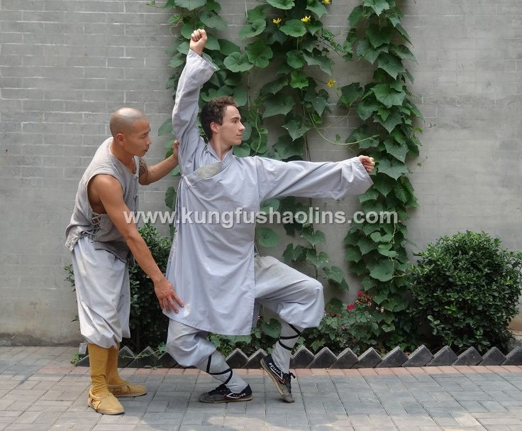 Meihua Quan static position number 4:  Xiao Shi.  Practice Meihua Quan under the guidance of Shifu Shi Yan Jun (Du Weijun), 17th Disciple of Meihua Quan. He is the Founder & President of International Meihua Quan Federation, Vice-President of Chinese Meihua Quan Association and Xingtai University Professor for Meihua Quan.