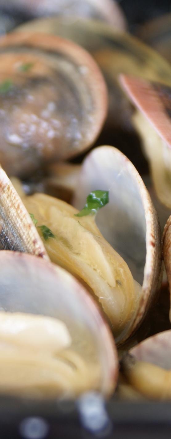 Almejas. Restaurante Las Dunas del Portil. Nuevo Portil (Cartaya - Huelva)