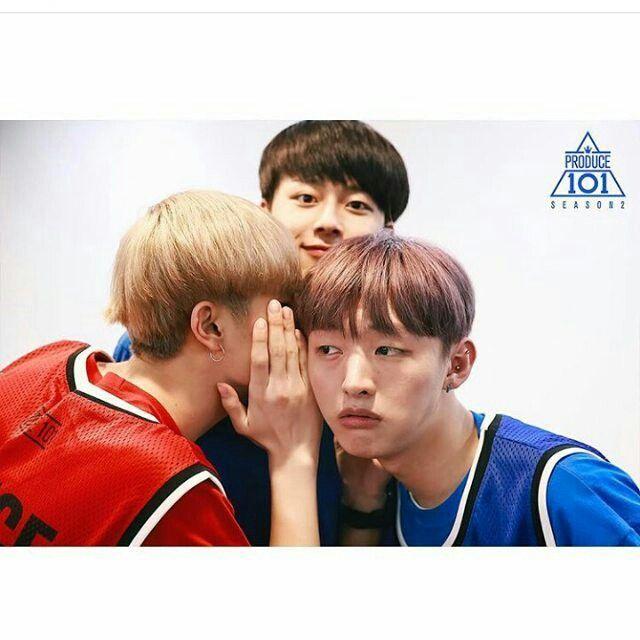 Produce 101 boys  #jisung#minki#seonho