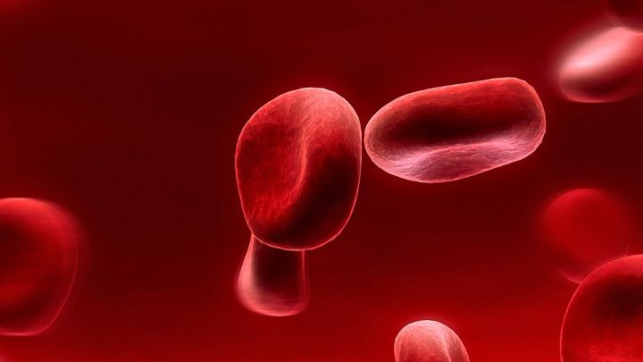 UBC researchers make progress in being able to change blood types   Researchers have inched closer in their goal of being able to change blood types – a possible answer to blood transfusion and non-availability of a specific blood type.