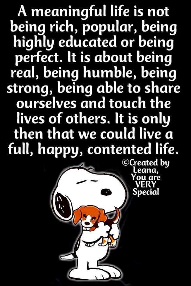 ❤️nice words for a content life | Snoopy quotes, Peanuts ...
