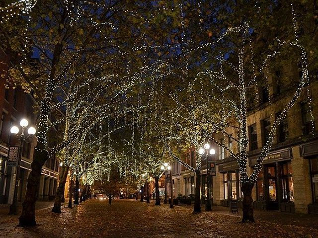"""117 Me gusta, 2 comentarios - Vero Palazzo (@veropalazzo) en Instagram: """"Frío, viento y lluvia... pero una noche de Otoño en Seattle puede ser así de mágica ✨ .  Meses…"""""""