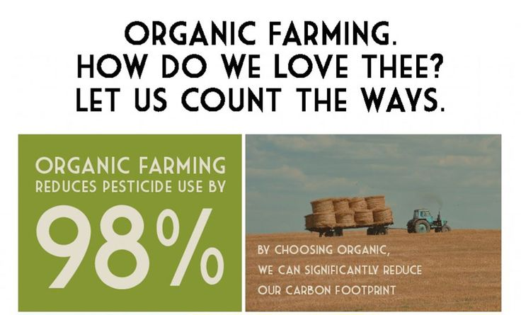 We've all heard about the benefits of eating organic but, more often than not, the process involved in producing those lovely organic foods is left to the imagination. What is really involved in the process of organic farming and what makes it so great?