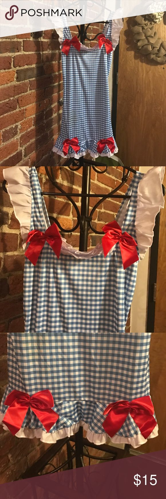 Wizard of Oz Dorothy Halloween costume Worn once Spirit Halloween Dresses Mini