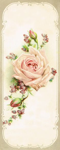 Free Printable Antique Rose Image ~~from Knick of Time @http://knickoftime.net/