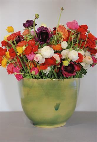 Colorful | Kleurvol #flowers #gardens #decor