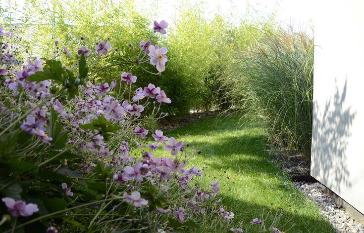 Dolni Mecholupy Garden