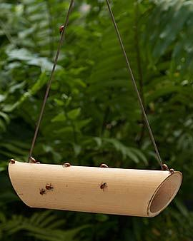 Ladybug feeder. Ladybugs help with Aphid infestations. Just place a raisin inside the bamboo. Hmmm...who knew?
