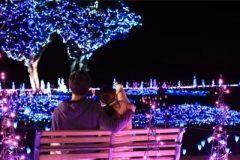千葉県のマザー牧場ではイルミネーションキラキラファームが行なわれてるよ 今年は42万球のイルミネーションが場内を彩っています ファミリー向けやカップル向けにショーの開催されるし写真撮影にもってこいの光のトンネルなんかもあるんだって 今年のクリスマスのデートはここで決まりだね tags[千葉県]